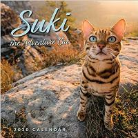 Suki the Adventure Cat 2020 Calendar by Martina Gutfreund – ALL RIGHTS SOLD to Andrews McMeel Publishing